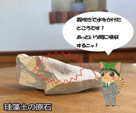 珪藻土の原石